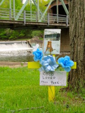 A touching scene at Harpersfield Dam. I could easily imagine Coco romping along the river.