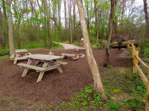 Another view of the Lake Erie Bluffs campsite. Talk about deluxe accommodations — fire pit, grill, benches, two picnic table and a stack of firewood.